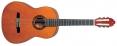 Valencia CG160 klasická gitara