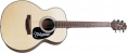 Takamine G FXC G220 akustick gitara